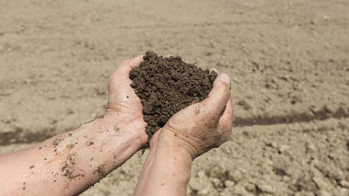ゴミ箱にはNG!土の捨て方|ガーデニング・園芸の基本