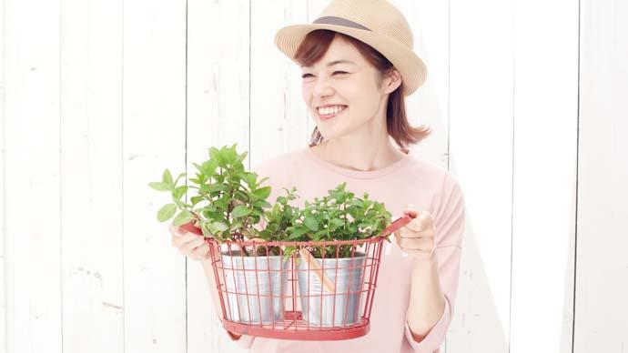 川瀬良子のお家ガーデニング<vol.8>爽やかな香りが嬉しいミントを育ててみよう!