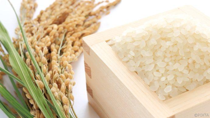 家事力を上げる!米にカビをはやさない予防策