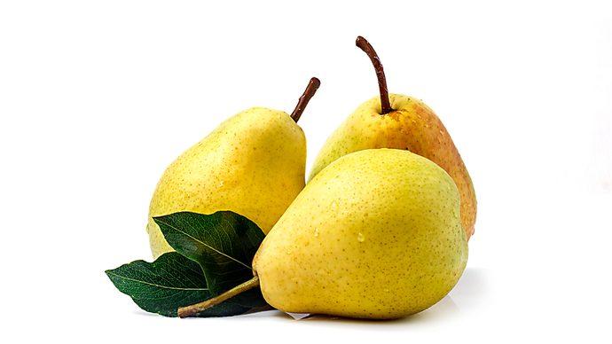 【管理栄養士解説】知って得する!りんごのカロリーと栄養を解説