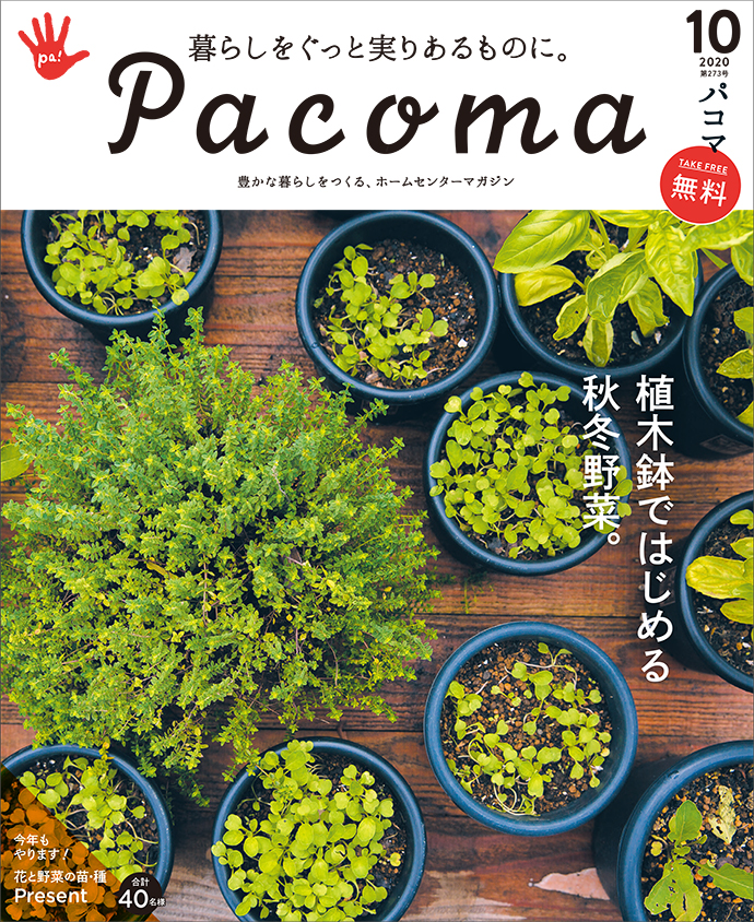 【Pacoma10月号】手軽にはじめる秋冬野菜。